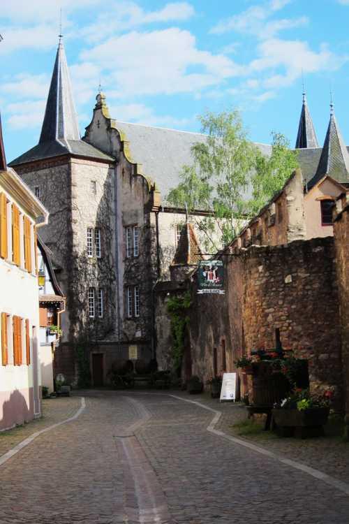 Le château devenu propriété de la Confrérie Saint-Etienne, en 1972 et le Musée du Vignoble