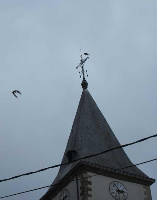 Lors de ces explications autour de l'église, deux cigognes prirent place sur le clocher.