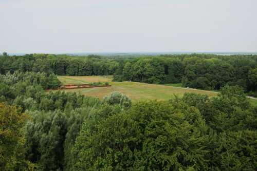 Le lieu de l'affrontement, les marais à droite et les collines boisées à gauche.