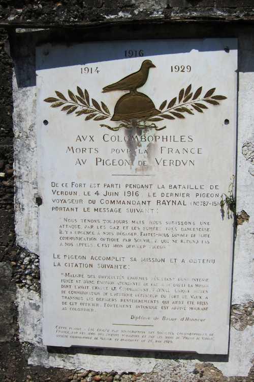 L'hommage au pigeon