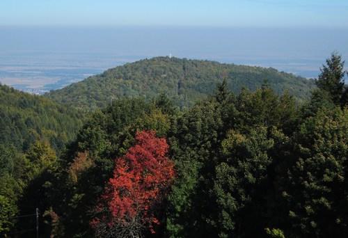 De l'auberge on voit le sommet du Vieil-Armand et au loin la plaine d'Alsace.