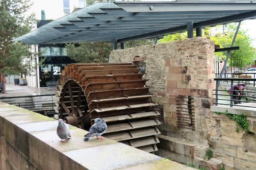 Les restes d'un moulin à huile, utilisant la force hydraulique de la Moder.